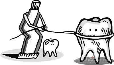 各种牙齿的小动物简笔画图片